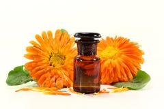 Marigold tincture Stock Images