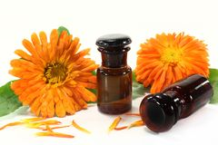 Marigold tincture Royalty Free Stock Photo