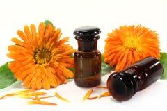 Marigold tincture Royalty Free Stock Photo