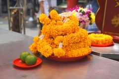 Marigold on tray and orange on red plate for respect royalty free stock photo