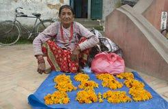 Marigold Vendor Stock Images