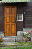 Marigolds που ρίχνονται πλησίον Στοκ Εικόνα