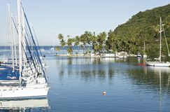 Marigot bay st.lucia. Sailboats moored at marigot bay st.lucia Royalty Free Stock Photos