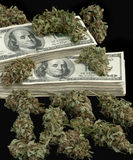 Marihuana-4 Stock Foto