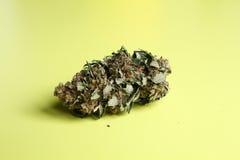 Marihuana Stockfoto