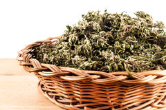 marihuana Lizenzfreies Stockbild