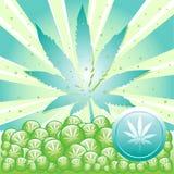 marihuana Fotografia Royalty Free
