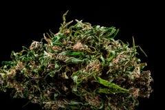 Marihuana auf einem weißen Hintergrund Lizenzfreie Stockfotos