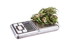 Marihuana auf einem weißen Hintergrund Stockbilder