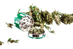 Marihuana auf einem weißen Hintergrund Lizenzfreie Stockbilder