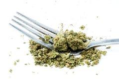 Marihuana, Biały tło Zdjęcia Royalty Free