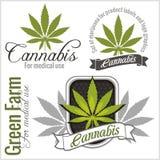Marihuana - Cannabis Voor medisch gebruik Beeldverhaal polair met harten Stock Afbeeldingen