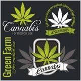 Marihuana - Cannabis Voor medisch gebruik Beeldverhaal polair met harten Royalty-vrije Stock Fotografie