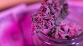 Marihuana in einem Glas Hanfgelenk Medizinisch oder erholsam lizenzfreie stockbilder