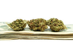 Marihuana, Gelder aus dem Drogenhandel Lizenzfreies Stockfoto