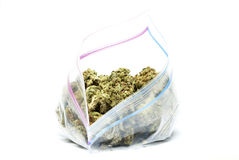 Marihuana i marihuana Zdjęcie Stock