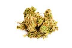 Marihuana  isolated on white background drugs Royalty Free Stock Image