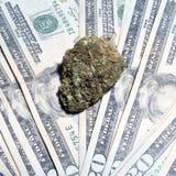 Marihuana, legale Arzneimittelindustrie in Amerika Lizenzfreies Stockfoto