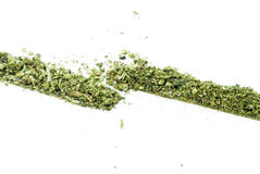 Marihuana, Legalisierung, weißes Hintergrund-Studio, entspannender Hanf Lizenzfreie Stockfotos