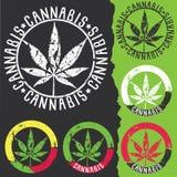 Marihuana liścia sylwetki symbol stempluje ilustrację Fotografia Royalty Free