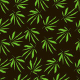 Marihuana liście broderia Ręka Rysujący Wektorowy bezszwowy wzór obrazy royalty free