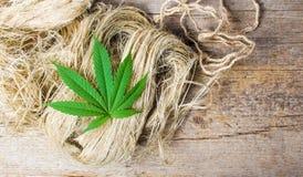 Marihuana liście na górze konopianych włókien Fotografia Royalty Free