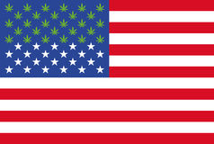 Marihuana nu wettelijk in 28 staten van de grafische informatie van de V.S. royalty-vrije illustratie