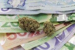 Marihuana op Canadees Contant geld stock afbeelding
