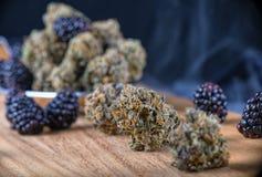 Marihuana pączkuje Jagodowego Noir napięcie z świeżą owoc - medyczną mąci zdjęcie stock