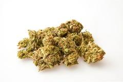 Marihuana pączki obrazy stock