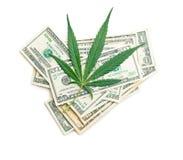 Marihuana pieniądze i liść fotografia stock