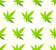 Marihuana Seamless Pattern Royalty Free Stock Images