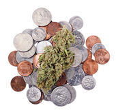 Marihuana u. Änderung stockfotografie