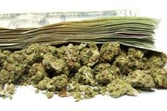 Marihuana und Geld Lizenzfreies Stockfoto