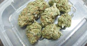Marihuana. Verordnungs-medizinische und entspannende Arzneimittelindustrie. Stockfotos