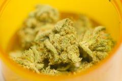 Marihuana w zbiorniku Zdjęcie Stock
