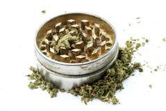 Marihuana, weißer Hintergrund Stockbild