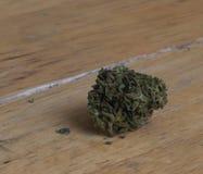 Marihuanaknop Stock Fotografie