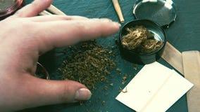 Marihuanaonkruid in vrouwelijke hand Molen en marihuanaknoppen op de achtergrond stock videobeelden