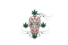 Marihuany głowa Zdjęcie Stock