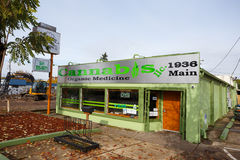 Marihuany Organicznie medycyna Springfield Oregon zdjęcie royalty free