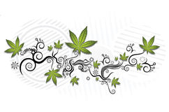 Marihuany tekstury graficzny tło Obraz Royalty Free