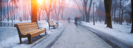 Mariiinsky Park Royalty Free Stock Photography