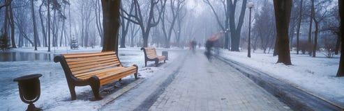 Mariiinsky Park Royalty Free Stock Photos