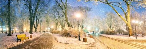 Mariinsky garden during inclement weather Stock Photography