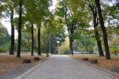Mariinsky park. Beautiful autumn nature in Kyiv Stock Image