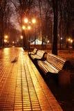 Mariinsky park at night Stock Photos