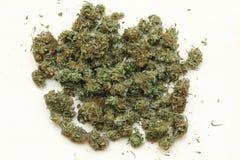 Marijuana. Medical marijuana. Therapeutic and medicinal cannabis Stock Photography
