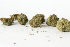 marijuana Imagen de archivo libre de regalías