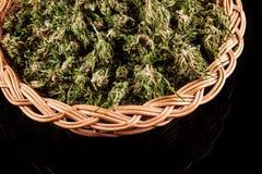 marijuana Fotografía de archivo libre de regalías